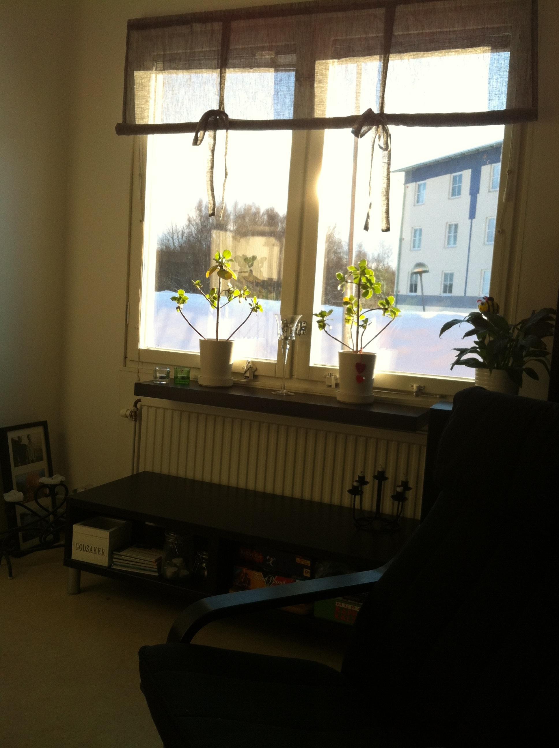 Fönsterbräda och nya gardiner i vardagsrummet